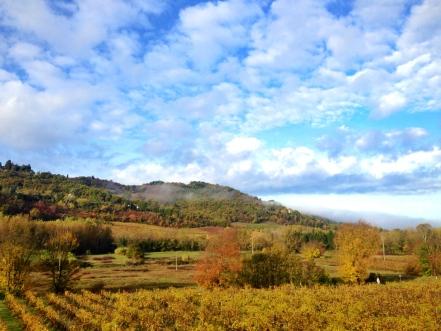 chianti-vineyards-toskana-tuscany-italya-2