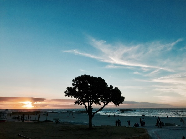 Camps Bay (Cape Town, Güney Afrika, South Africa)