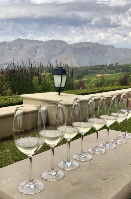 Wine Tasting at Ernie Els (Stellenbosch, Cape Town, Güney Afrika, South Africa)