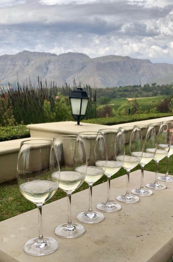 Wine Tasting at Ernie Els (Stellenbosch, Cape Town, Güney Afrika, South Africa)