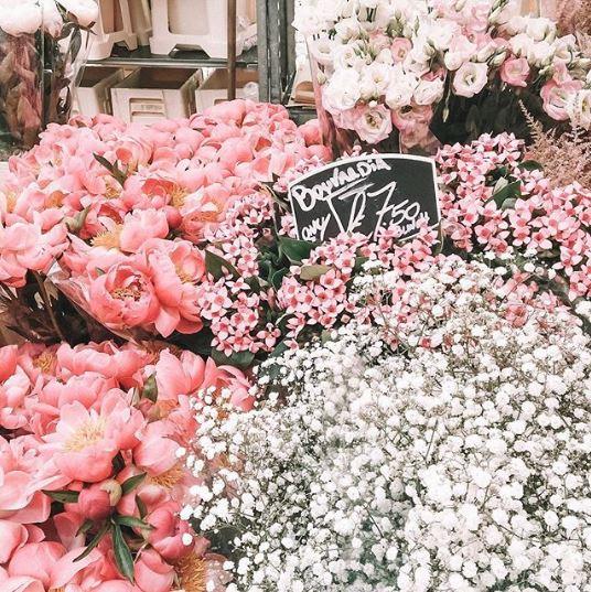 Columbia Road Flower Market, Londra, İngiltere