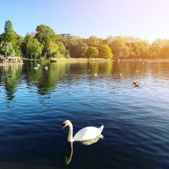 Hyde Park, Londra, İngiltere.JPG