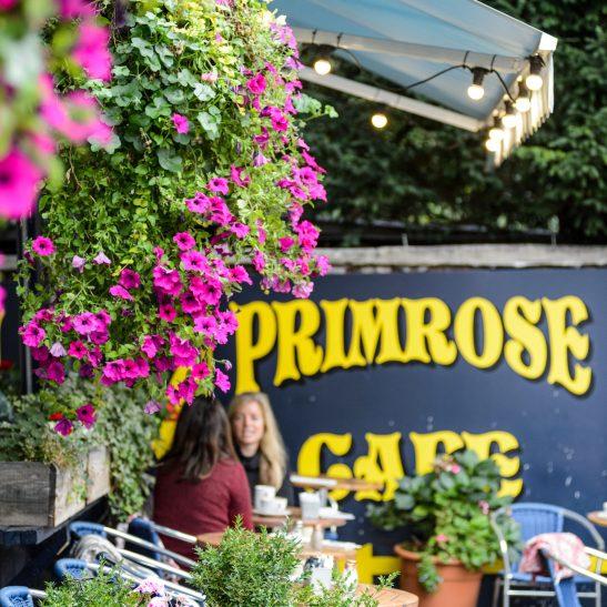 Primrose Cafe Bristol